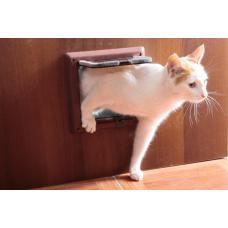 Как приучить кошку к дверце?