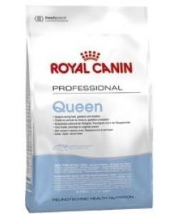 Для беременных и лактирующих кошек (Queen)