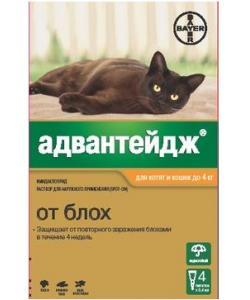 Адвантейдж капли для кошек до 4 кг от блох, 4 пипетки по 0,4 мл