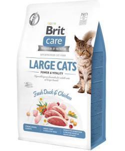 Гипоаллергенный корм для взрослых кошек крупных пород с уткой и курицей Care Cat GF Large cats Power & Vitality